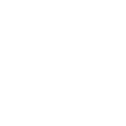 The Summer Camp